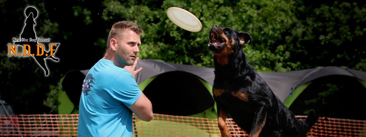 New Disc Dog Format