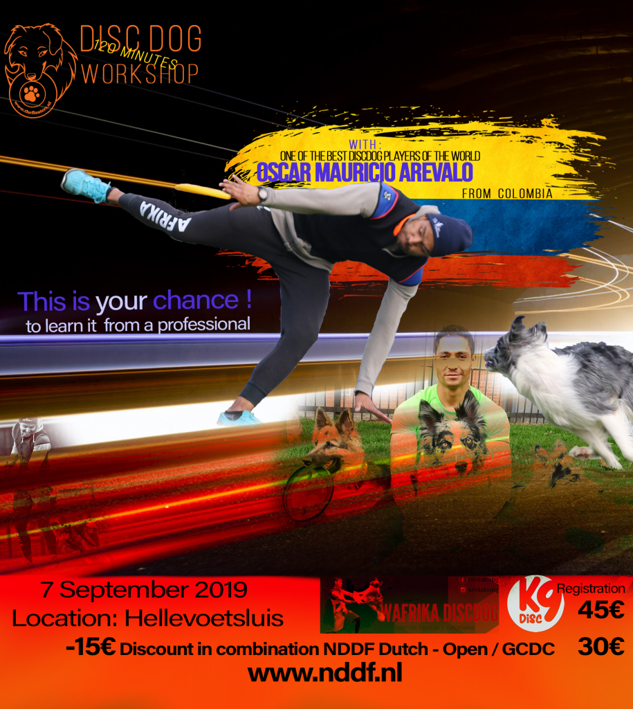 Disc Dog Workshop door Oscar Mauricio Arevalo